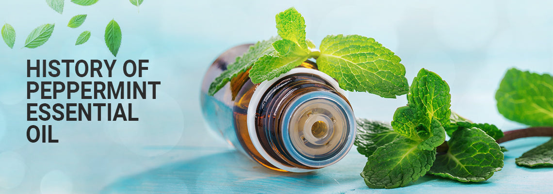 Peppermint Essential Oil: The Complete Profile