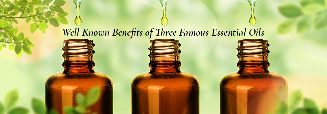 Well Known Benefits of Three Famous Essential Oils