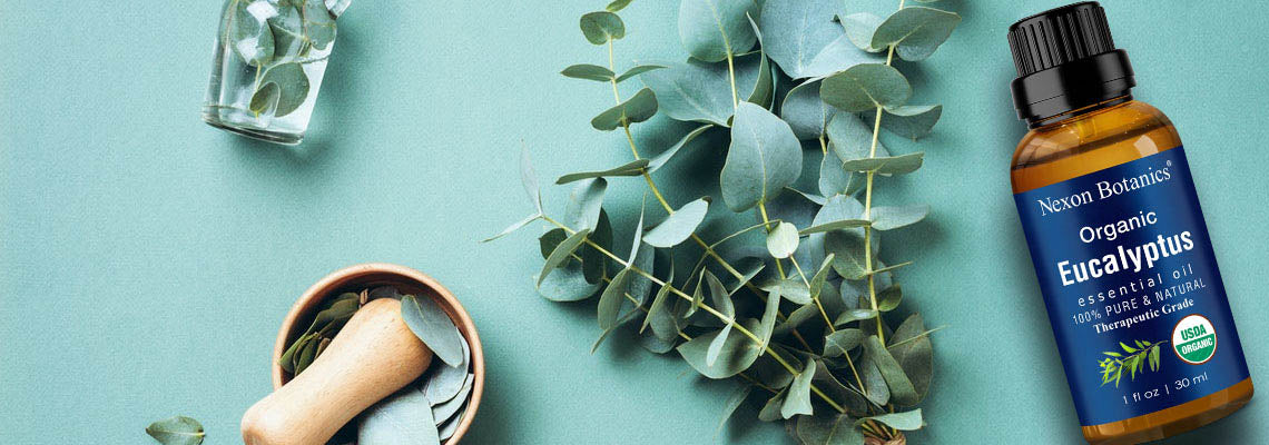 NB-The-Ultimate-Essential-Oil-Guide-eucalyptus