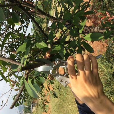 Carbon Branches Pruning Shear