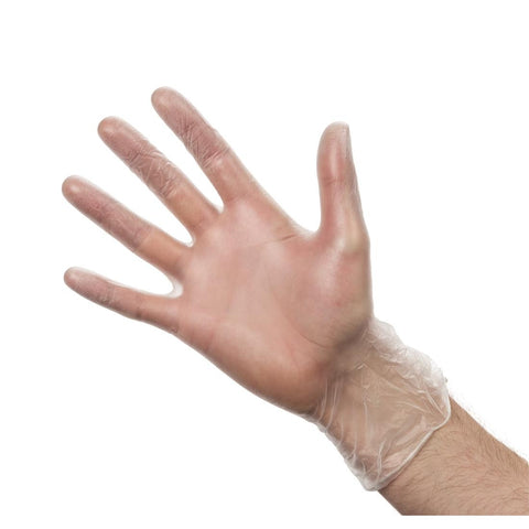 Powdered Vinyl Gloves Large (Pack of 100)