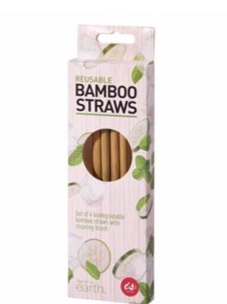 Reusable Bamboo Straws Set of 4
