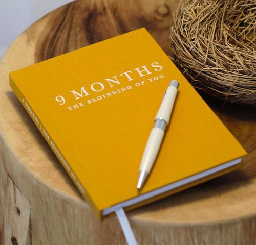 Pregnancy Journal 9 Months