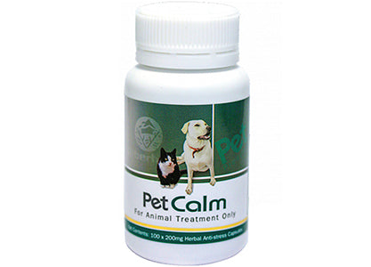 Have Your Pets Ever Become Stressed?