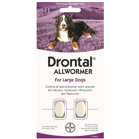 Drontal Allwormer Large Dogs
