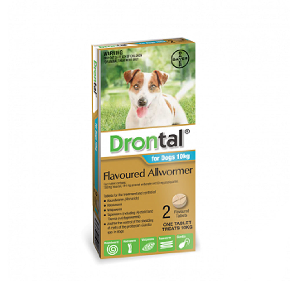 Drontal Flavoured Allwormer - For Small Dogs