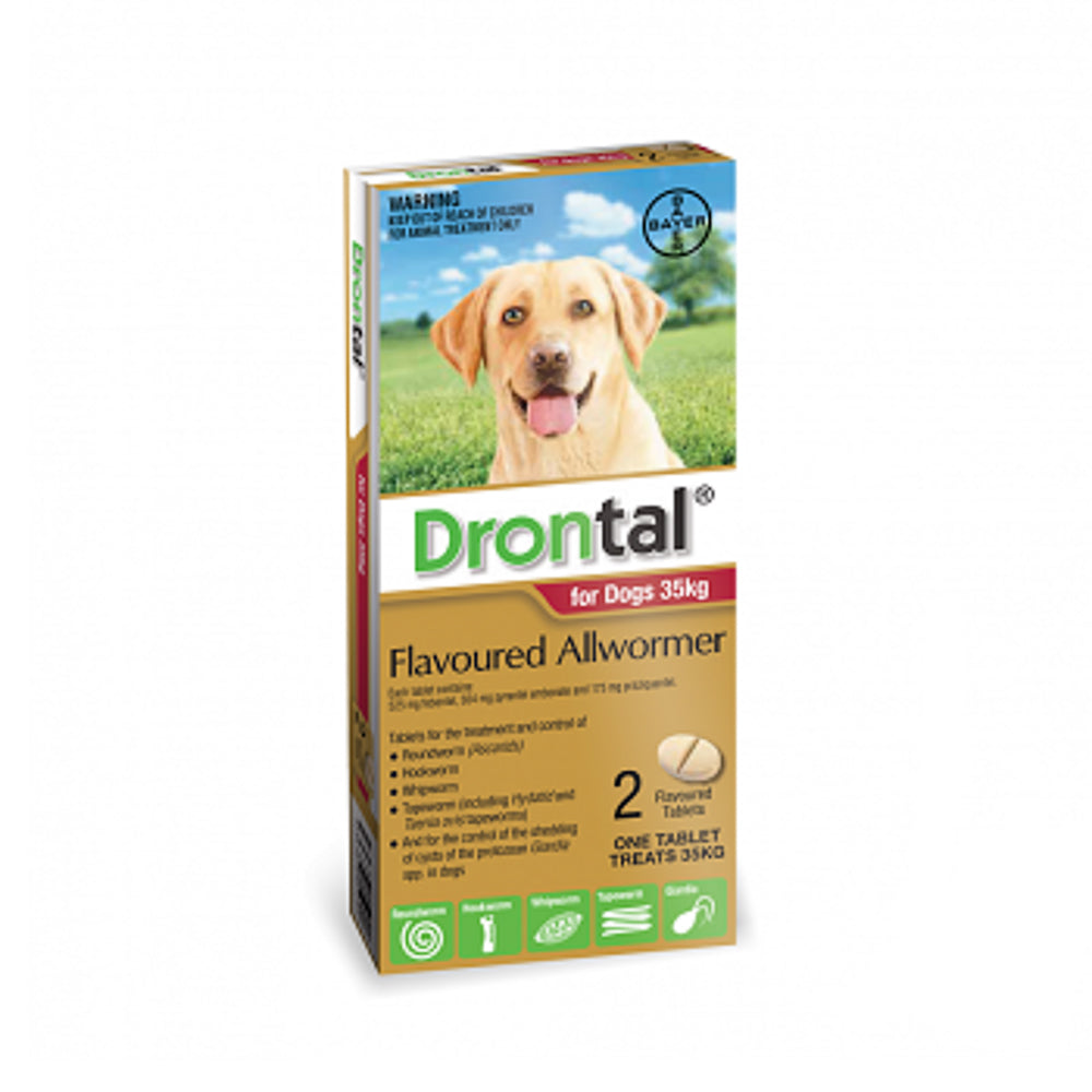 Drontal Flavoured Allwormer Large Dogs