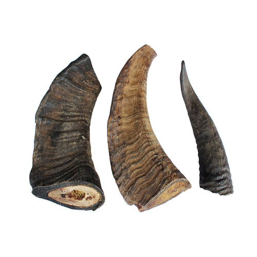 Goat Horn Dog Treat
