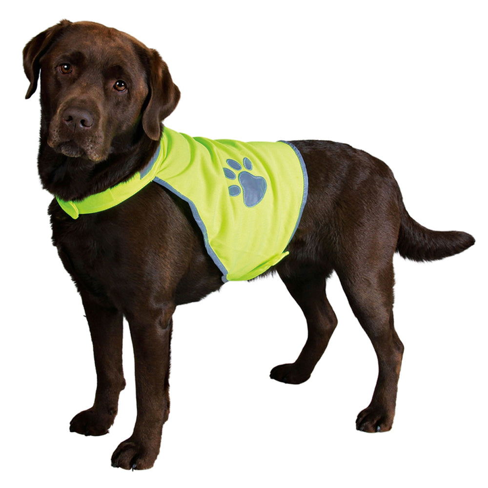 Reflective Safety Vest for Dogs