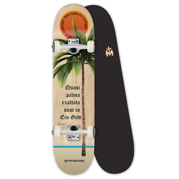"""Palm Tree"" by the Skating Friar. 8 Premium Complete LATIN LINE"