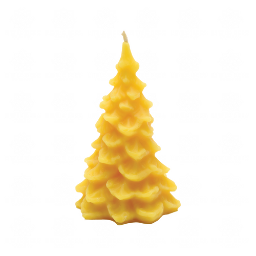 Evergreen Tree | Beeswax Candle