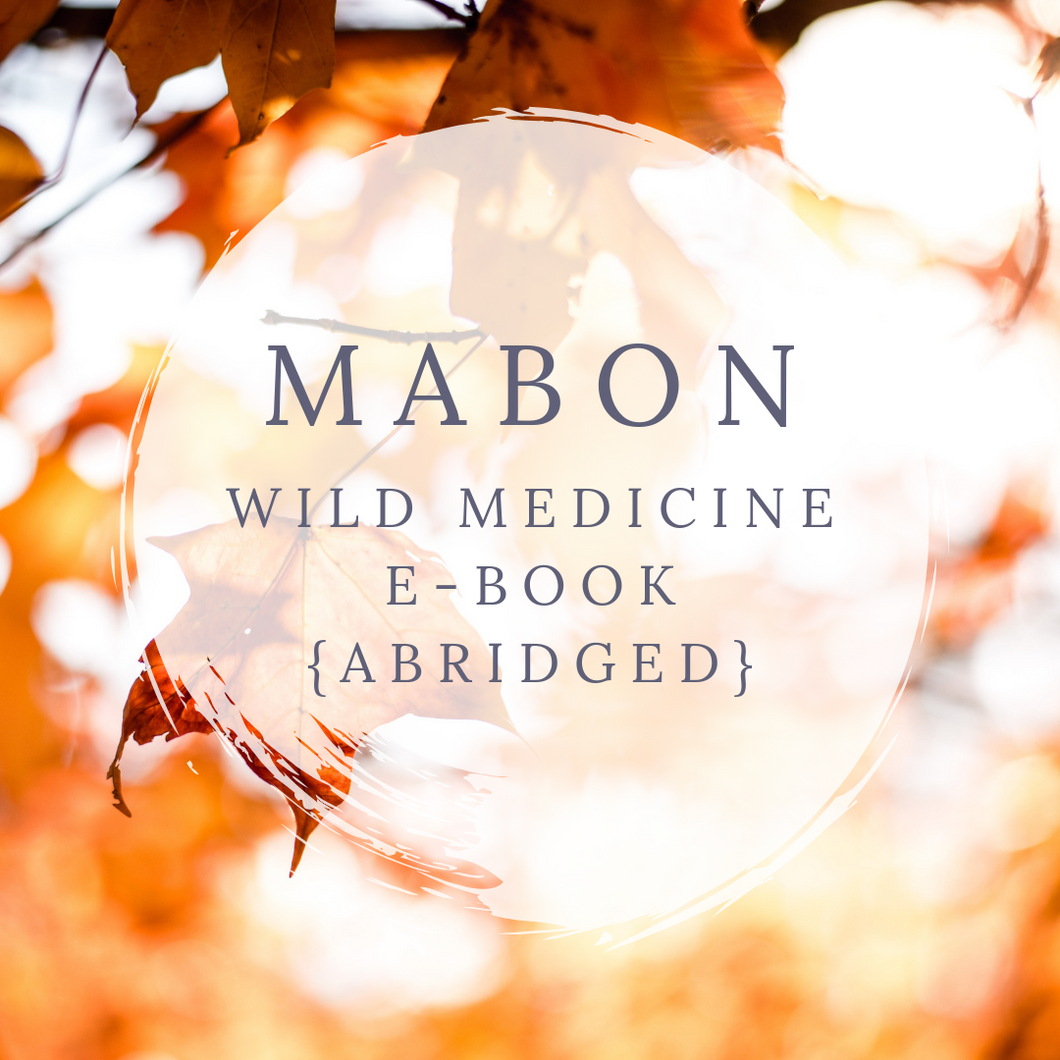 Mabon Wild Medicine E-Book (Abridged)