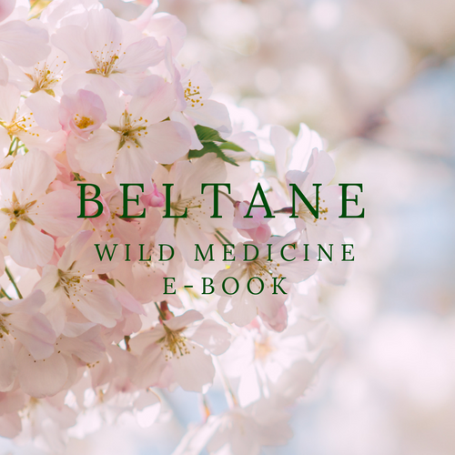 Beltane Wild Medicine E-Book (Full Version)