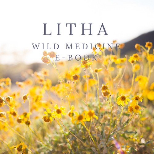 Litha Wild Medicine E-Book (Full Version)