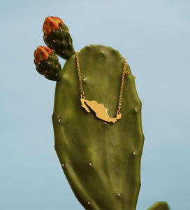 Mexico necklace