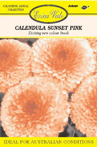 Calendula Sunset Pink - End of line - limited stock available