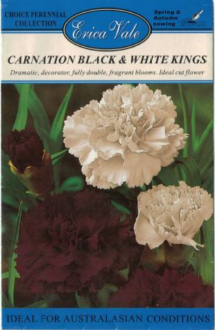 Carnation Black and White Kings