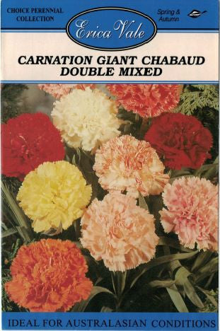 Carnation Giant Chabaud Double Mixed