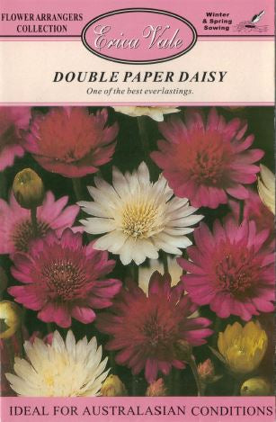 Double Paper Daisy