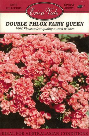 Double Phlox Fairy Queen