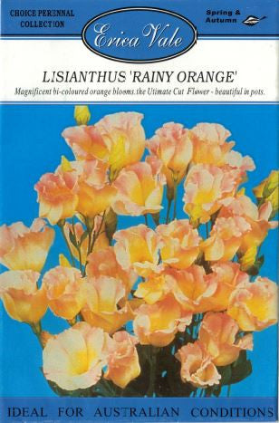 Lisianthis Rainy Orange