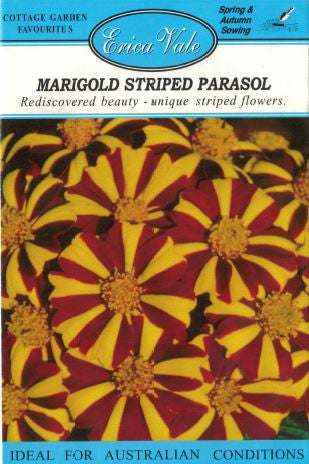Marigold Striped Parasol