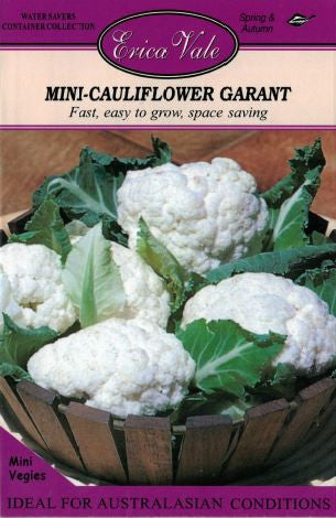 Mini Cauliflower Garant