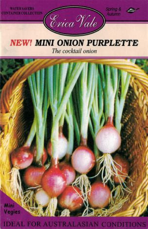 Mini Onion Purplette