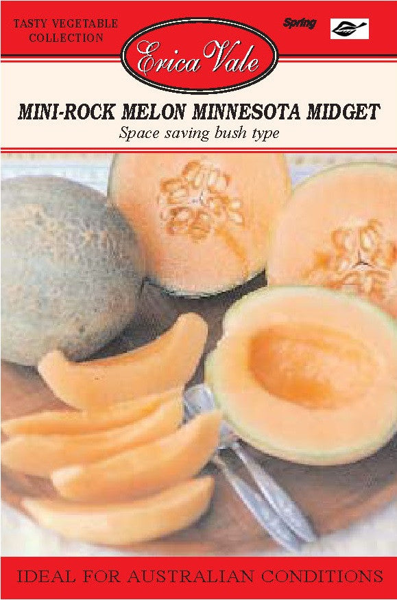 Mini Rock Melon Minnesota Midget