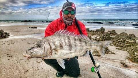 Big Catch Fishing Tackle - Steenbras Fishing - Congrats