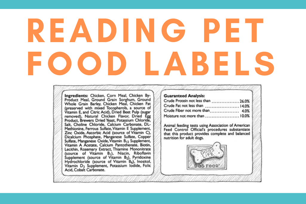 Do You Know How to Read Your Pet Food Labels?
