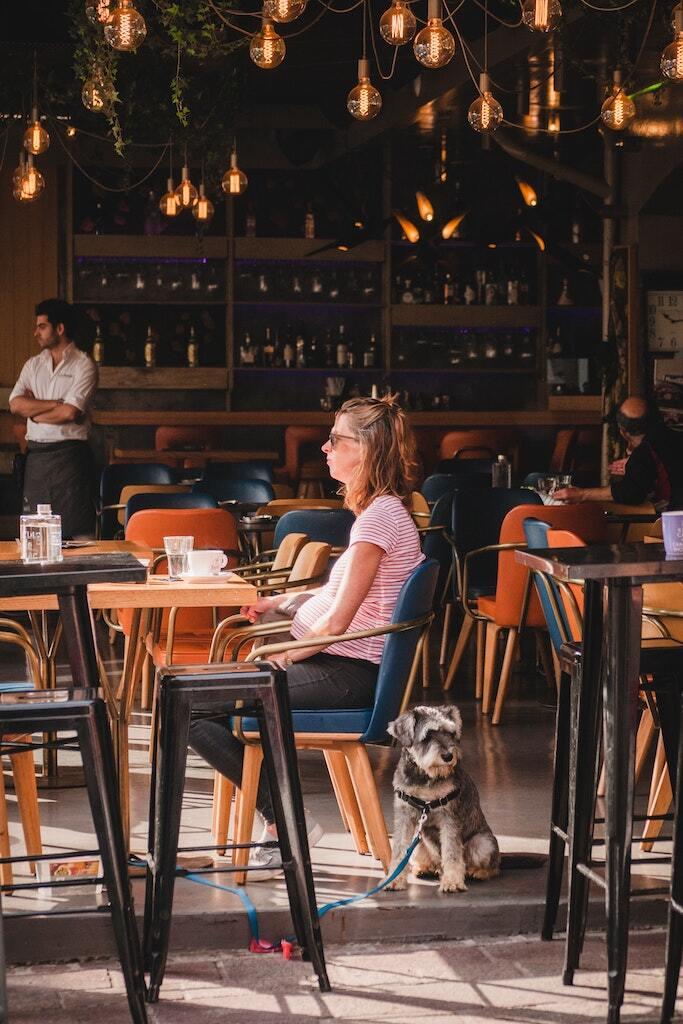 The Ultimate Guide to Dog Cafes in Singapore