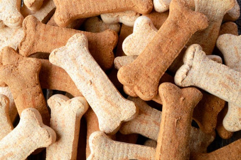 3 Delicious Homemade Dog Treat Recipes to Try