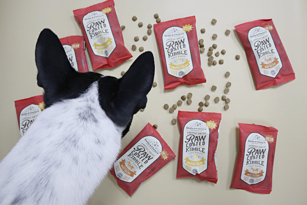 GDP Reviews: Stella & Chewy's Raw Coated and Raw Blend Kibbles