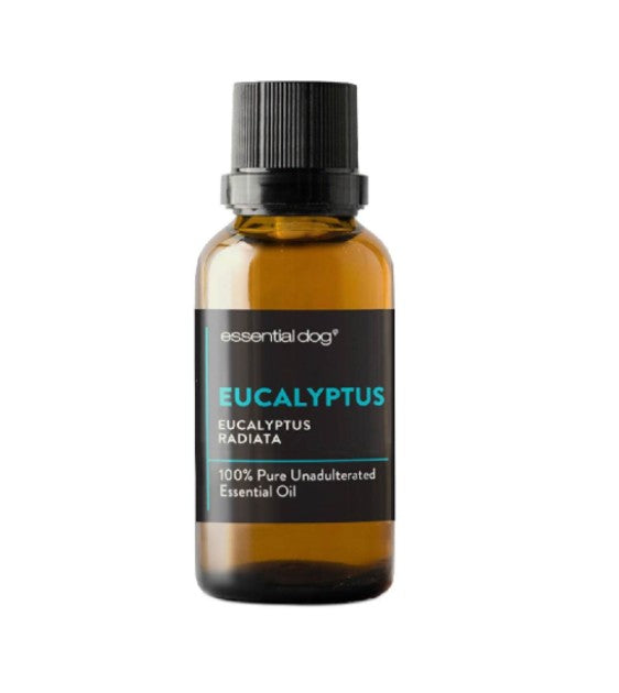 Essential Dog Pure Eucalyptus Essential Oil
