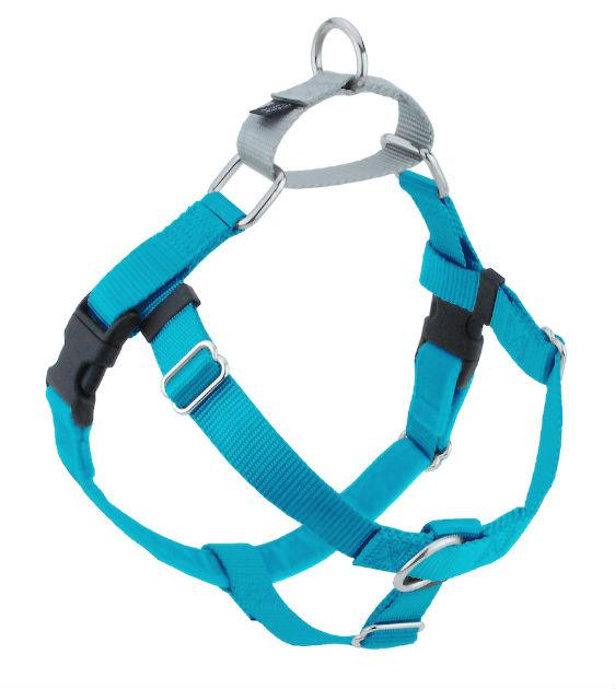 FREEDOM No-Pull Harness & Leash (Turquoise/Silver) For Dogs