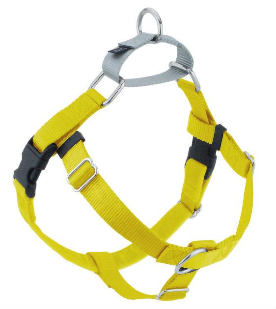 FREEDOM No-Pull Harness & Leash (Yellow/Silver) For Dogs