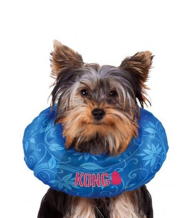 20% OFF:  KONG Cushion Dog Collar