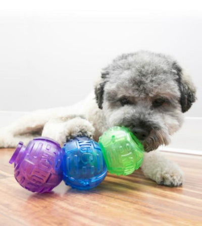 20% OFF:  KONG Lock-It 3-pk Dog Toy