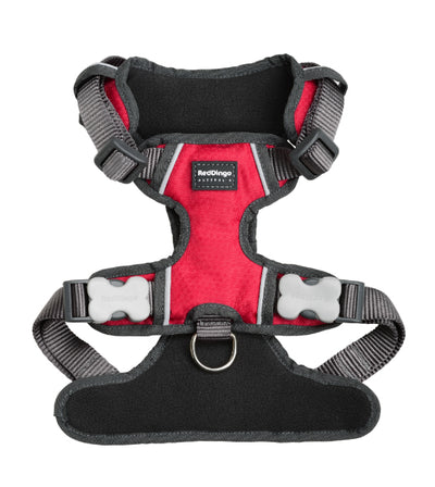 Red Dingo Padded Dog Harness (Red)