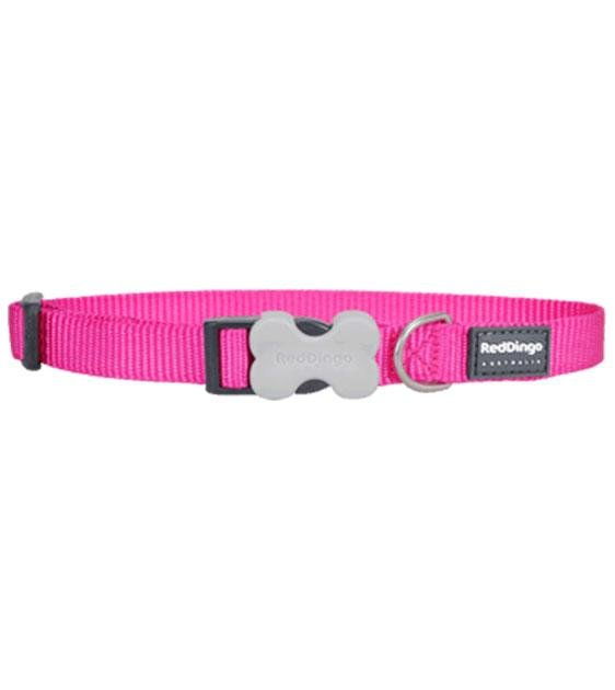 Red Dingo Classic Dog Collar (Hot Pink)