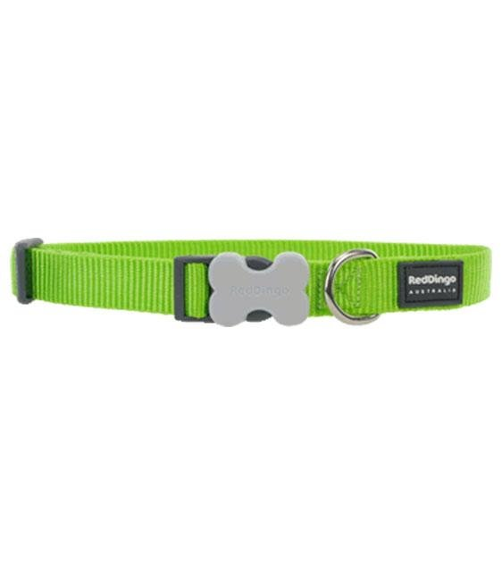 Red Dingo Classic Dog Collar (Lime Green)