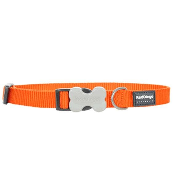 Red Dingo Classic Dog Collar (Orange)