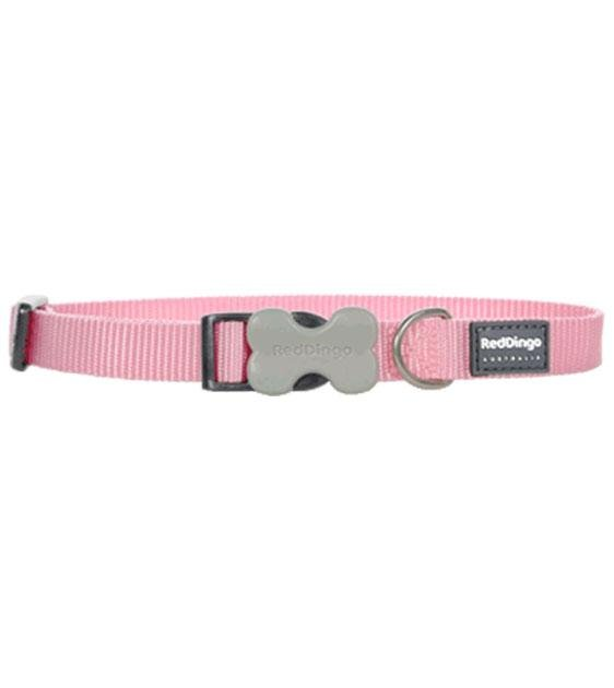 Red Dingo Classic Dog Collar (Pink)