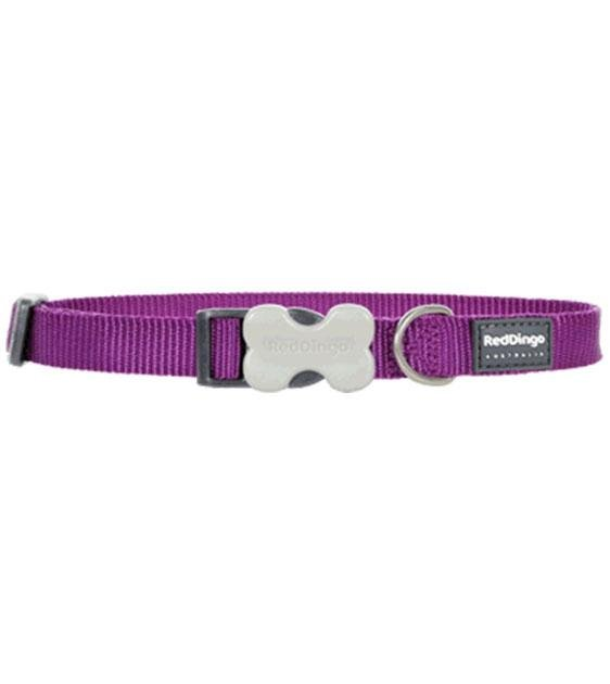 Red Dingo Classic Dog Collar (Purple)