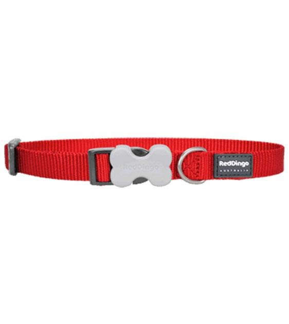 Red Dingo Classic Dog Collar (Red)
