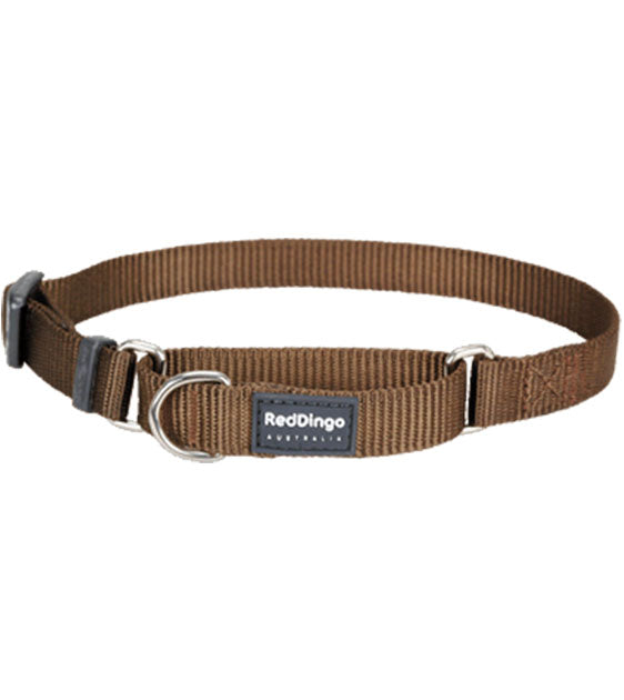 Red Dingo Martingale Choke Prevention Dog Collar (Brown)