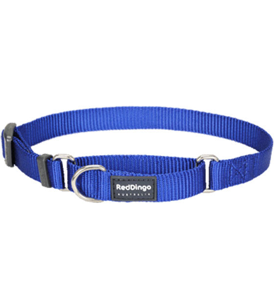 Red Dingo Martingale Choke Prevention Dog Collar (Dark Blue)