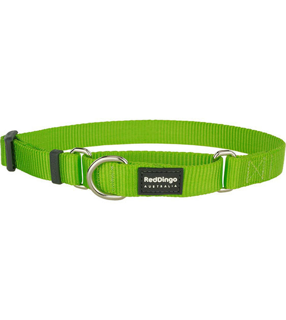 Red Dingo Martingale Choke Prevention Dog Collar (Lime Green)