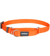 Red Dingo Martingale Choke Prevention Dog Collar (Orange)